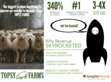Topsy Farms Case Story