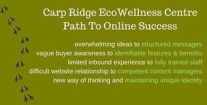 ecowellnes path to online success