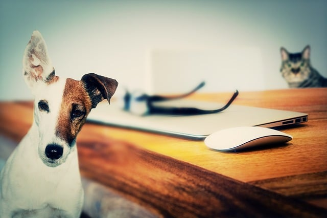 online writing help from an inbound marketing agency